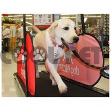 Běhací pás pro velké psy DOG PACER LF 3.1